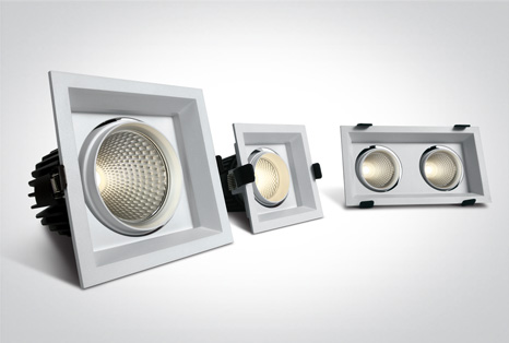 08 Downlights Adjustable LED
